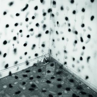 John Divola, Vandalism, 1973 - 1974, Courtesy of Gallery Luisotti, Santa Monica, California