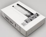 Ponte City book