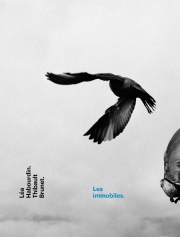 cover_les_immobiles.jpg