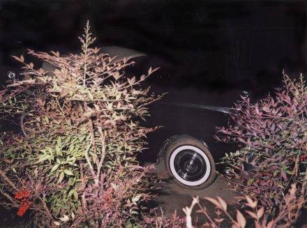 William Eggleston - Car wheel at night