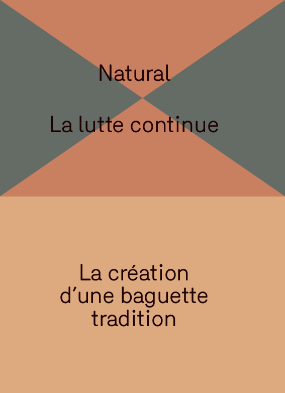 Natural, Le zoom dézoom, La création d'une baguette tradition, Ouvre l'oeil !, La lutte continue, Un amour éternel